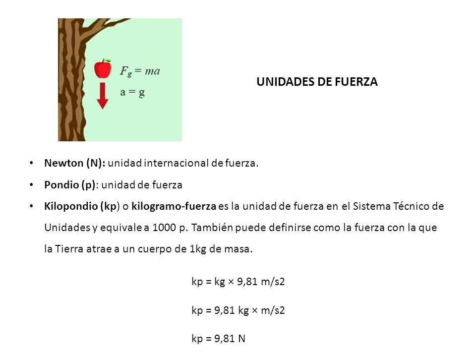 UNIDADES DE FUERZA Newton (N): unidad internacional de fuerza.