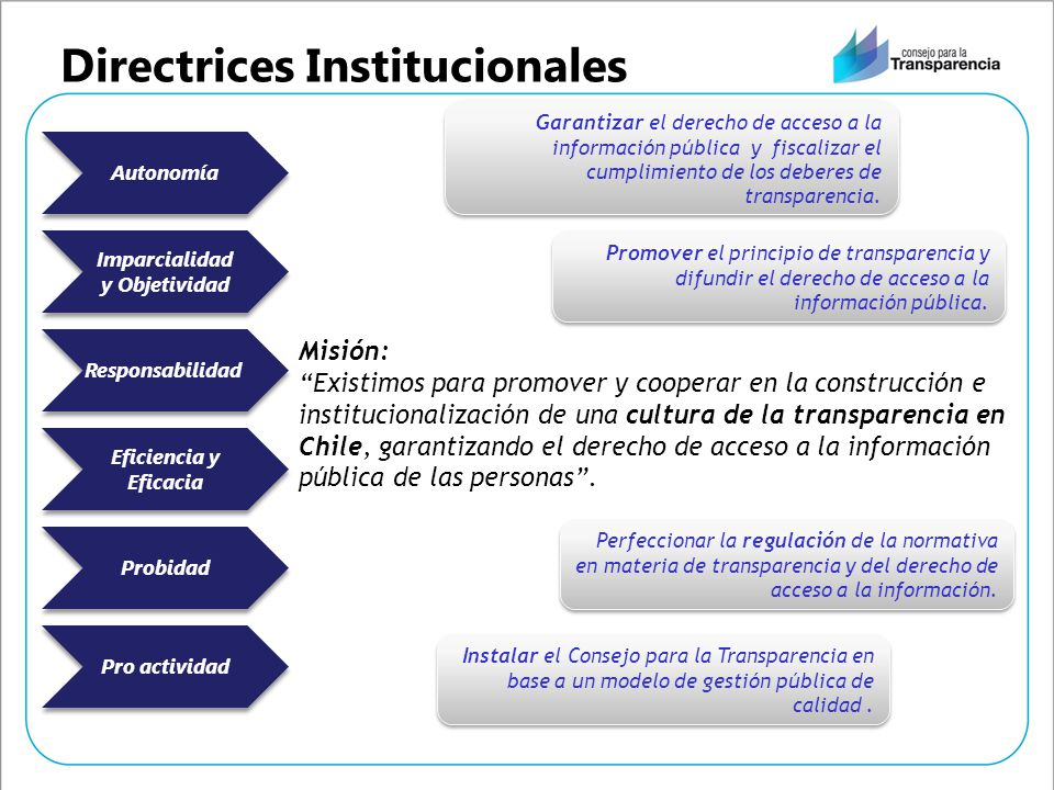 Directrices Institucionales