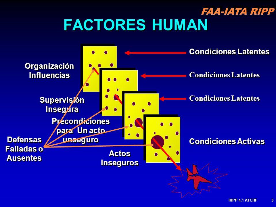 Organización Influencias