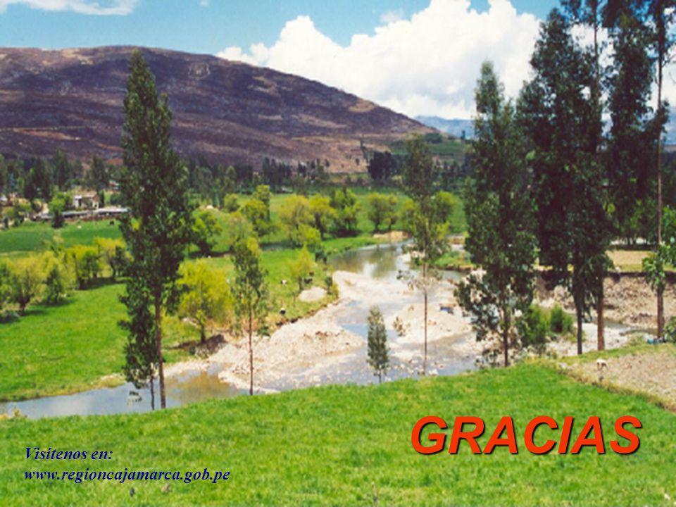 GRACIAS Visítenos en: www.regioncajamarca.gob.pe
