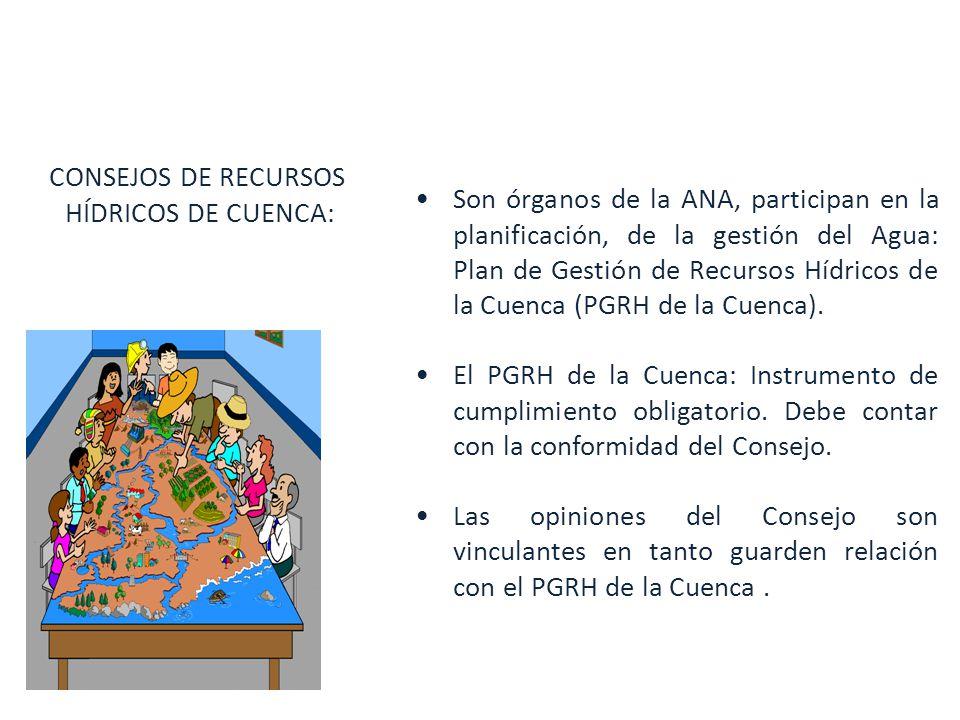 CONSEJOS DE RECURSOS HÍDRICOS DE CUENCA: