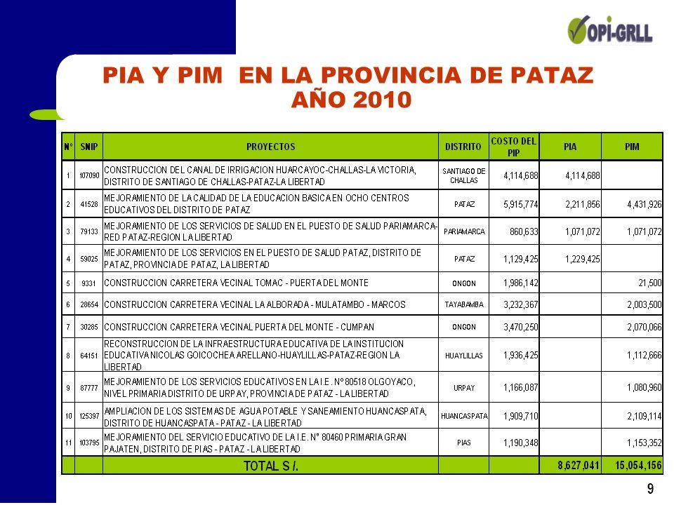 PIA Y PIM EN LA PROVINCIA DE PATAZ AÑO 2010