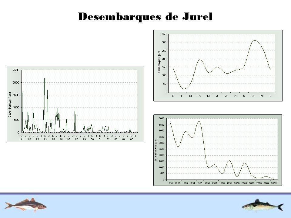 Desembarques de Jurel
