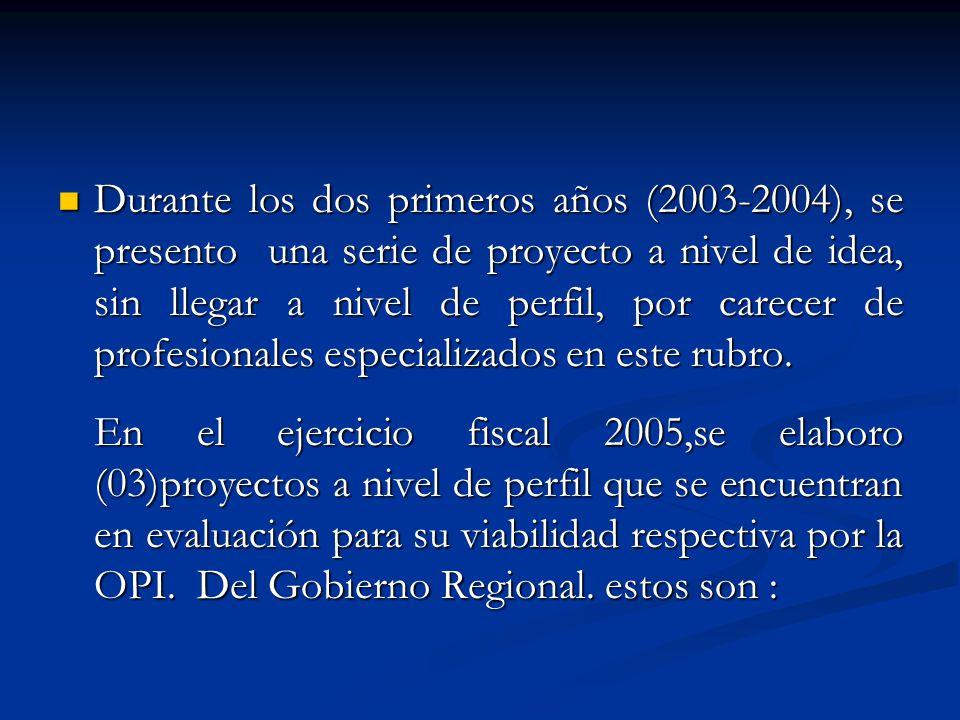 Durante los dos primeros años (2003-2004), se presento una serie de proyecto a nivel de idea, sin llegar a nivel de perfil, por carecer de profesionales especializados en este rubro.
