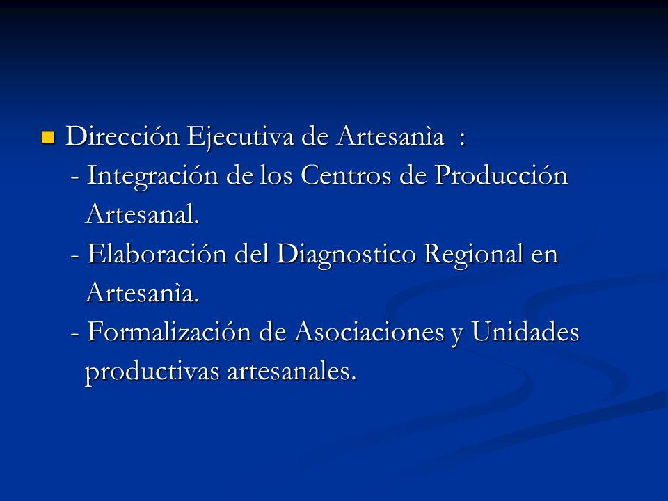 Dirección Ejecutiva de Artesanìa :