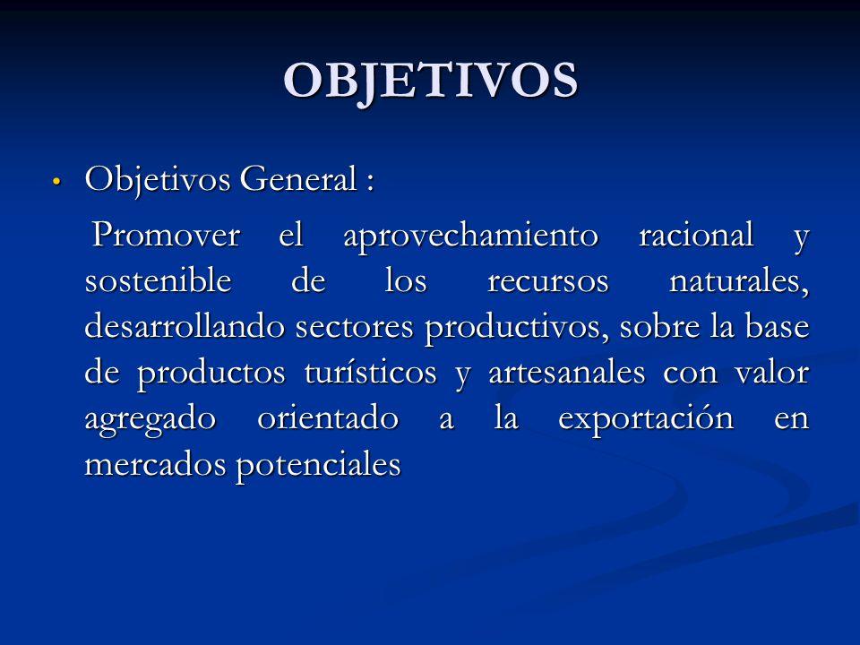 OBJETIVOS Objetivos General :