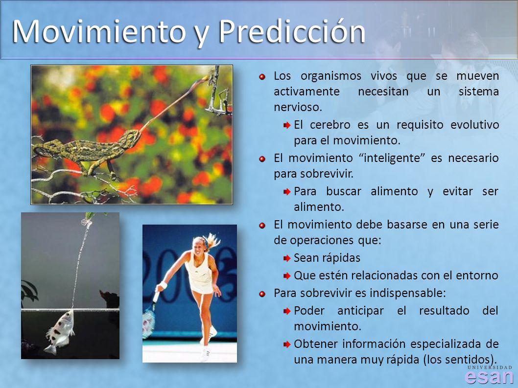 Movimiento y Predicción