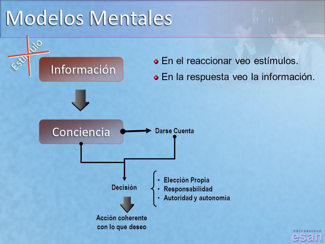 Modelos Mentales Información Conciencia Estimulo