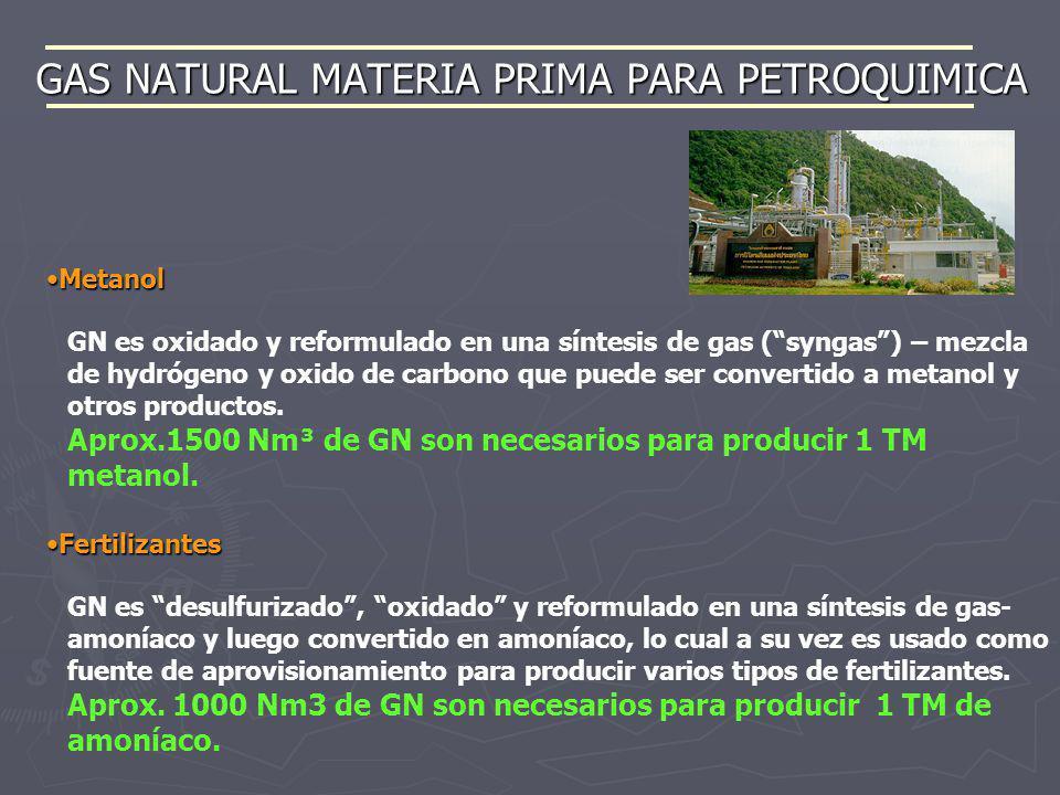 GAS NATURAL MATERIA PRIMA PARA PETROQUIMICA