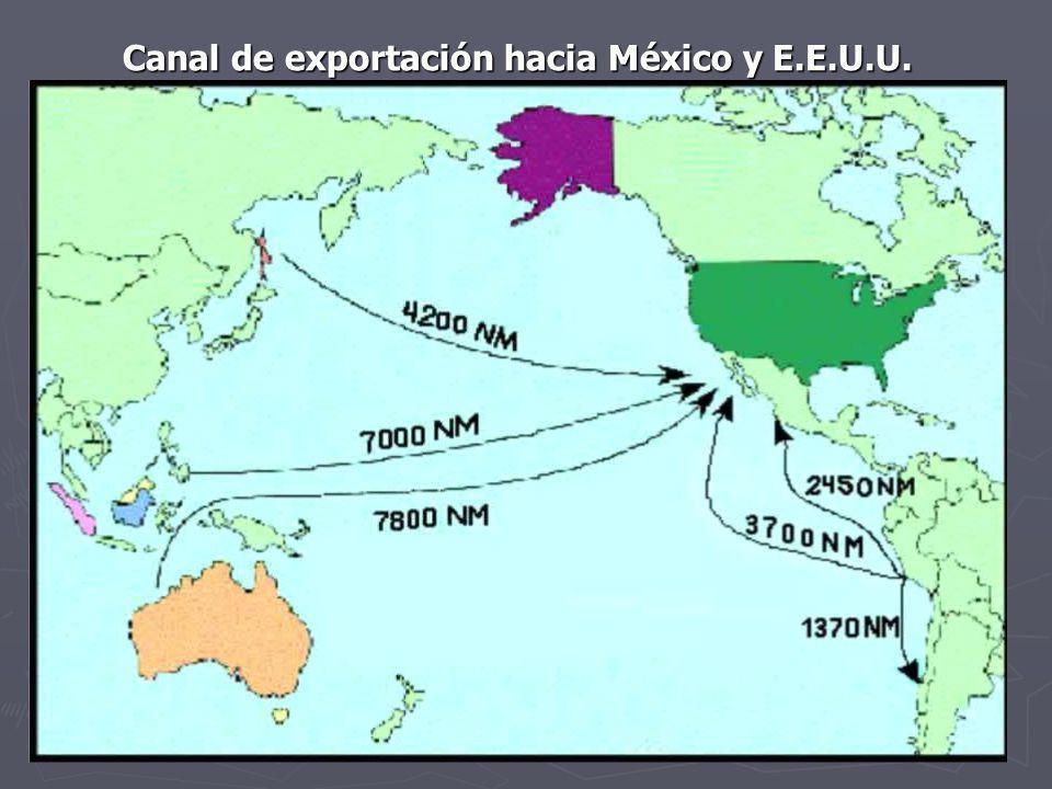 Canal de exportación hacia México y E.E.U.U.