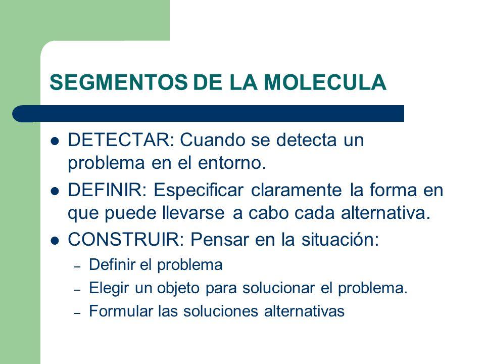 SEGMENTOS DE LA MOLECULA