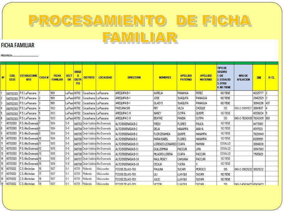 PROCESAMIENTO DE FICHA FAMILIAR