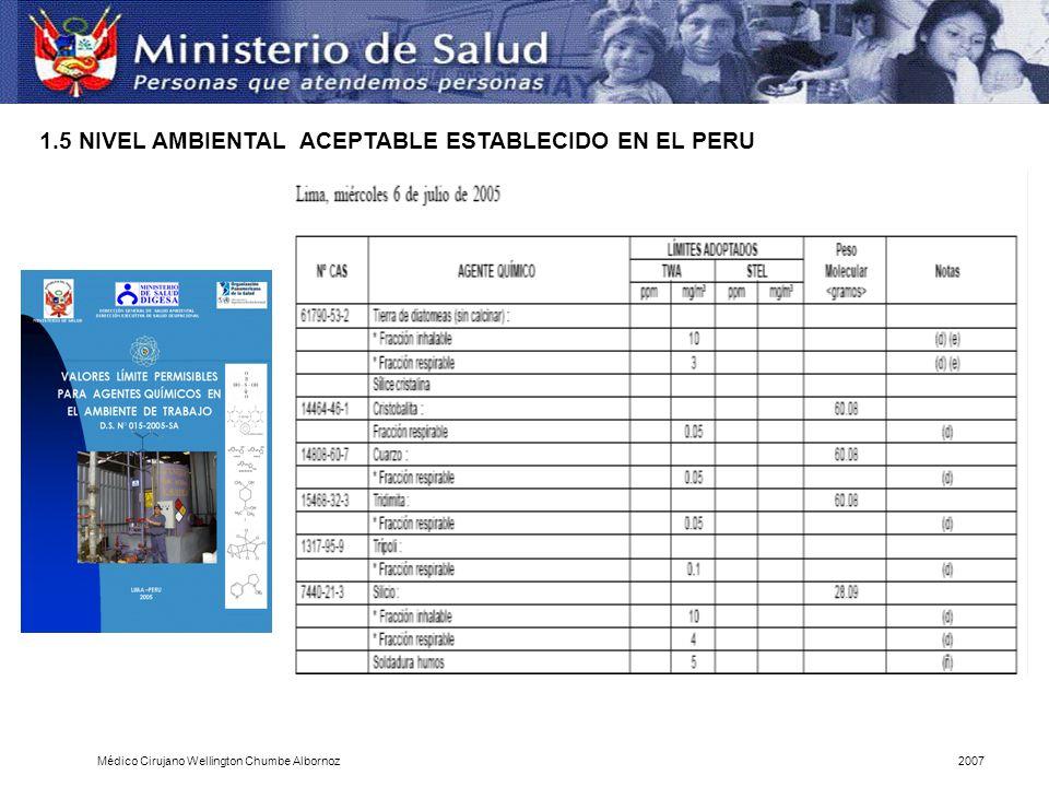 1.5 NIVEL AMBIENTAL ACEPTABLE ESTABLECIDO EN EL PERU