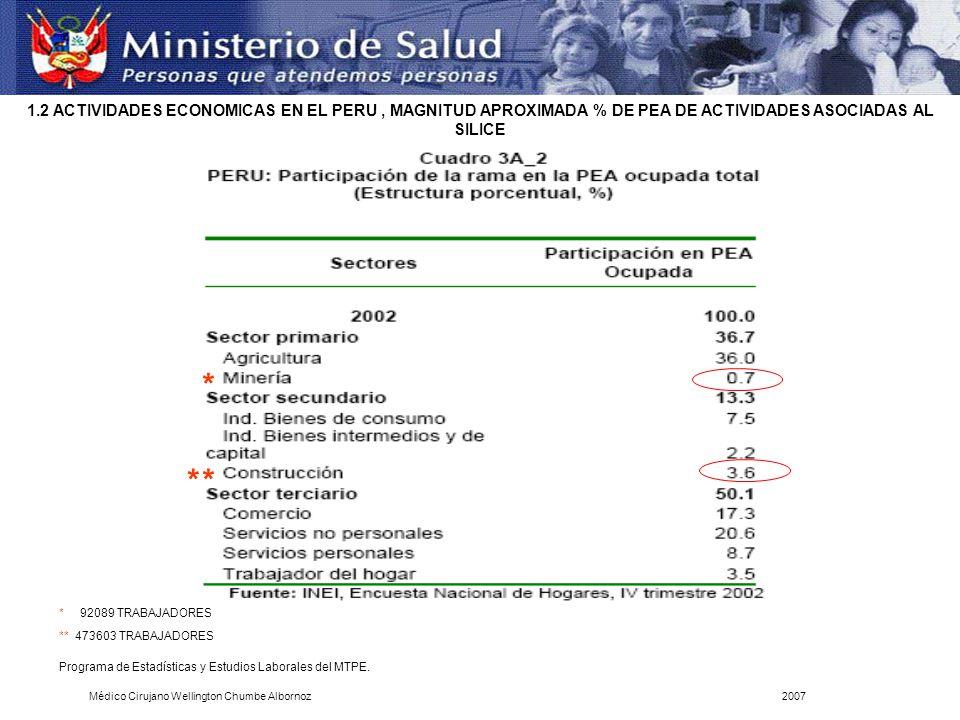 1.2 ACTIVIDADES ECONOMICAS EN EL PERU , MAGNITUD APROXIMADA % DE PEA DE ACTIVIDADES ASOCIADAS AL SILICE