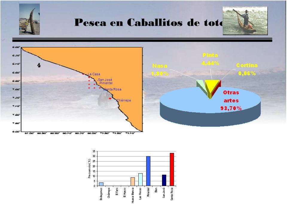Pesca en Caballitos de totora