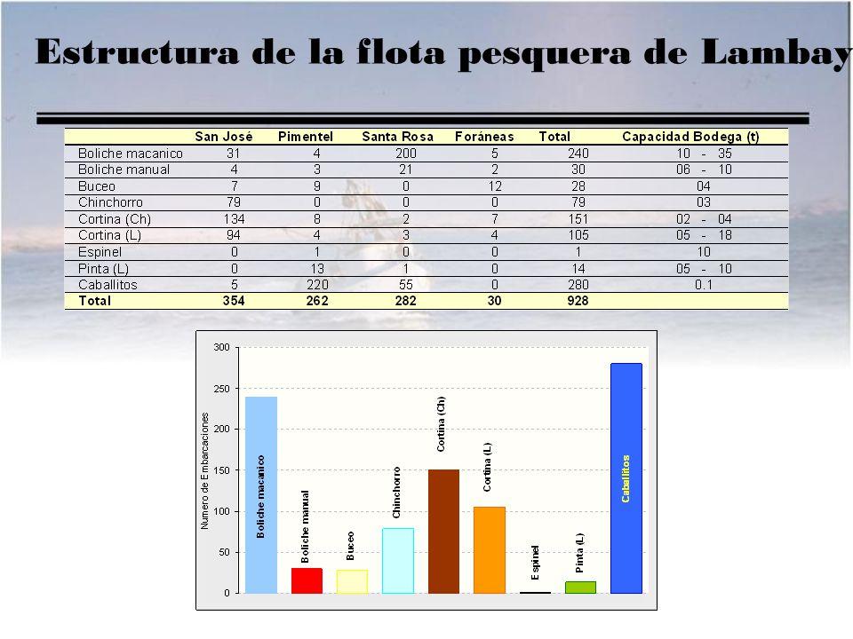 Estructura de la flota pesquera de Lambayeque.