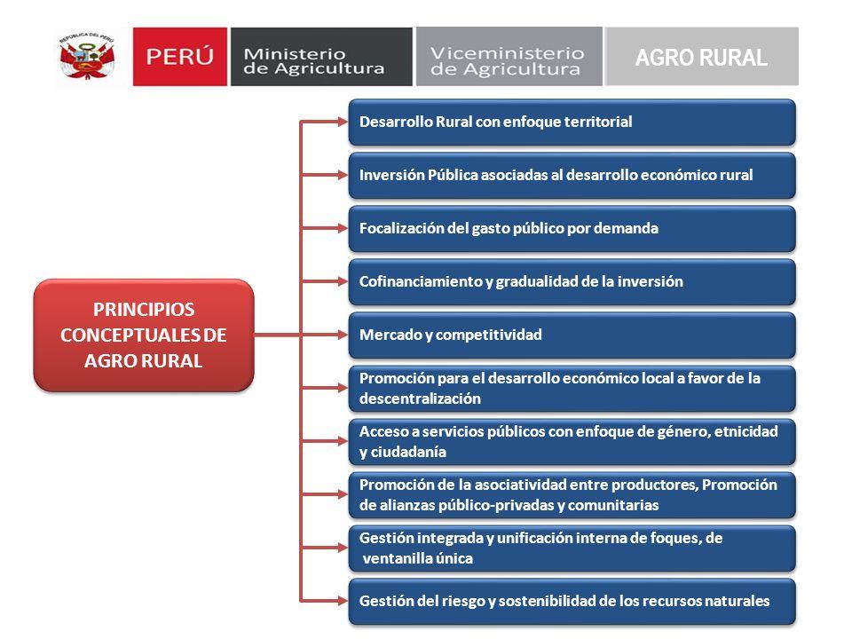 PRINCIPIOS CONCEPTUALES DE