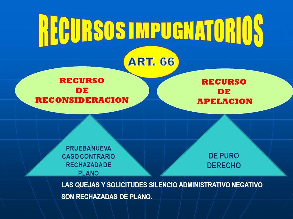 RECURSOS IMPUGNATORIOS PRUEBA NUEVA CASO CONTRARIO RECHAZADA DE PLANO