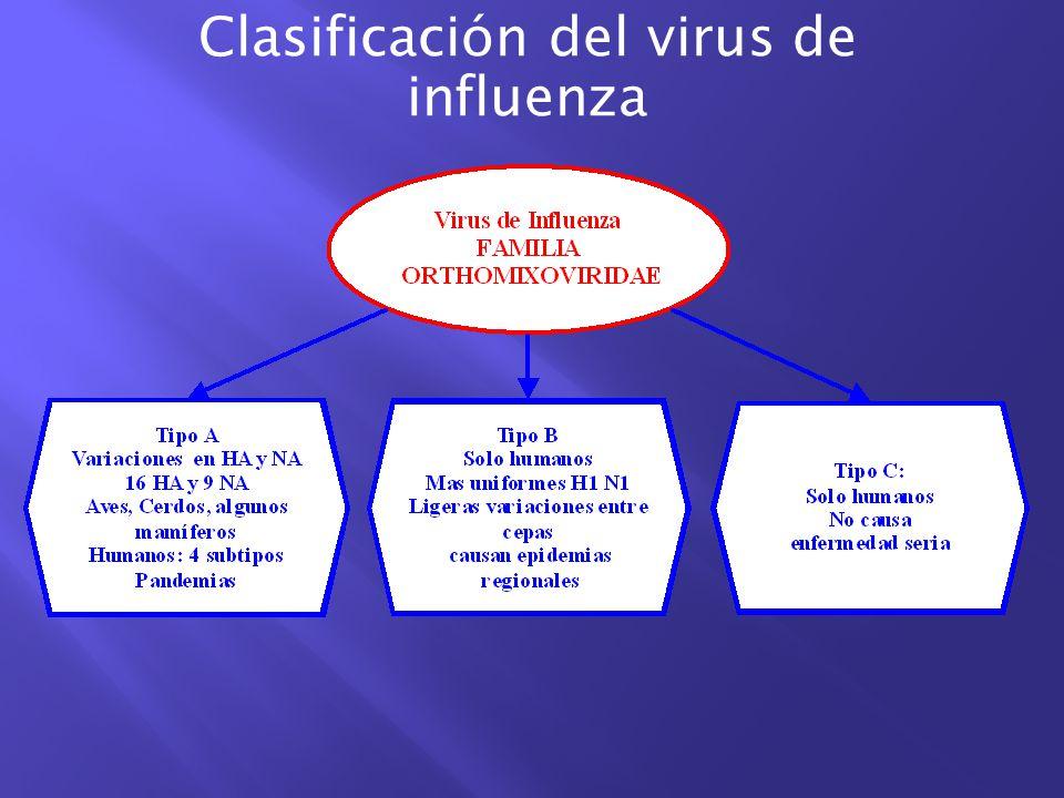 Clasificación del virus de influenza
