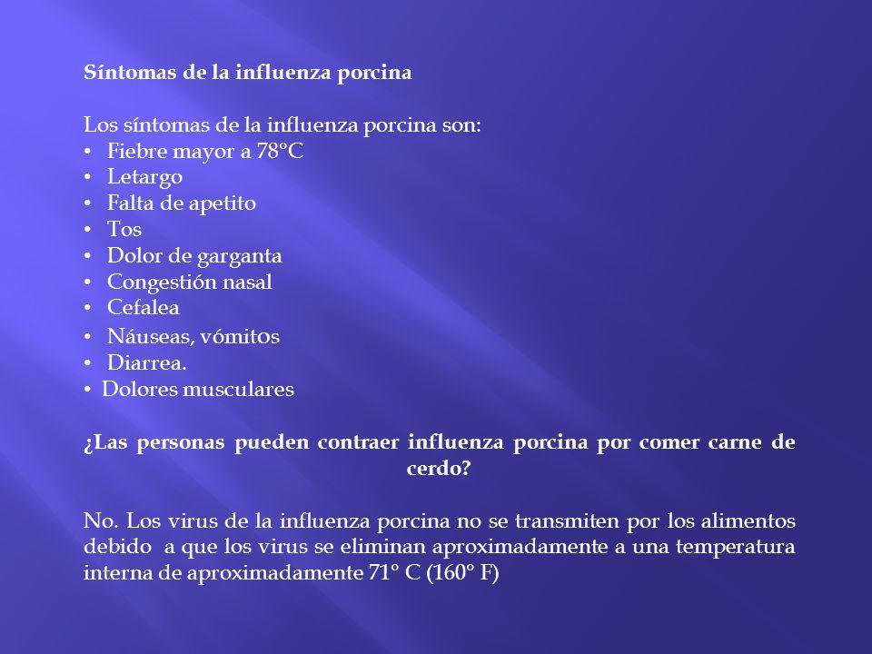 Síntomas de la influenza porcina Los síntomas de la influenza porcina son: