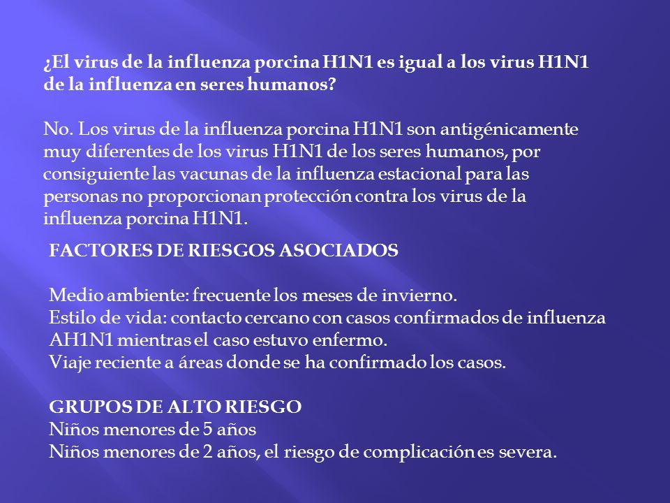 ¿El virus de la influenza porcina H1N1 es igual a los virus H1N1 de la influenza en seres humanos No. Los virus de la influenza porcina H1N1 son antigénicamente muy diferentes de los virus H1N1 de los seres humanos, por consiguiente las vacunas de la influenza estacional para las personas no proporcionan protección contra los virus de la influenza porcina H1N1.