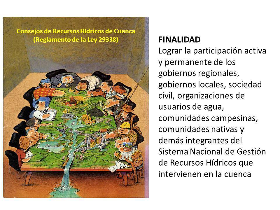 Consejos de Recursos Hídricos de Cuenca