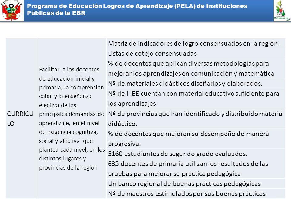 Matriz de indicadores de logro consensuados en la región.