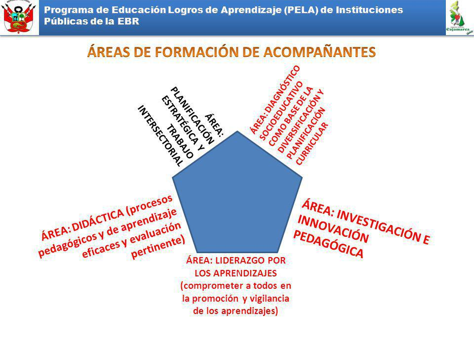 ÁREAS DE FORMACIÓN DE ACOMPAÑANTES