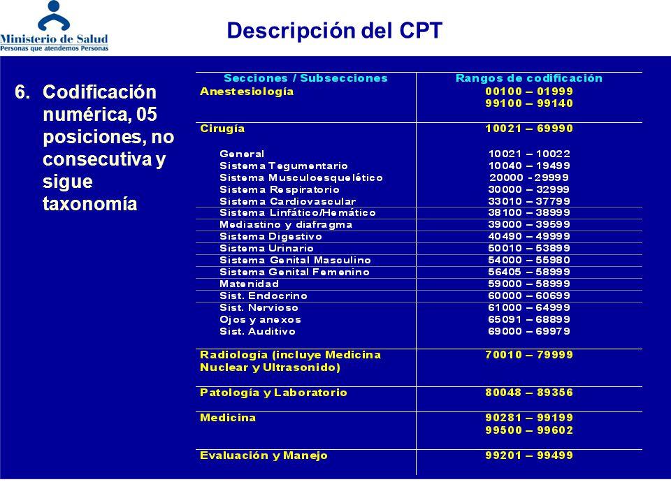 Descripción del CPT 6. Codificación numérica, 05 posiciones, no consecutiva y sigue taxonomía