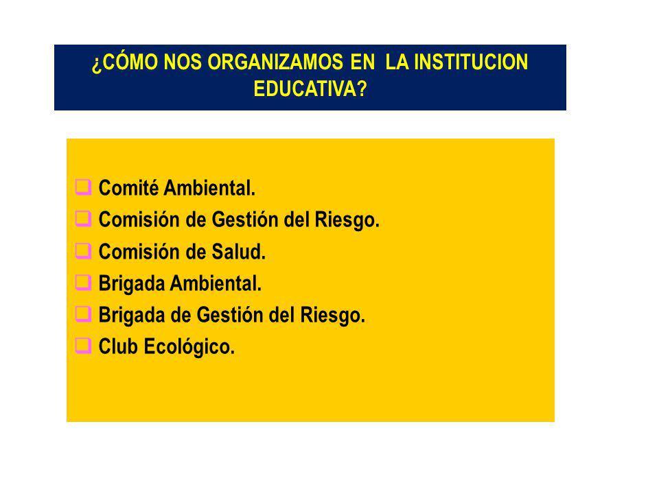 ¿CÓMO NOS ORGANIZAMOS EN LA INSTITUCION EDUCATIVA