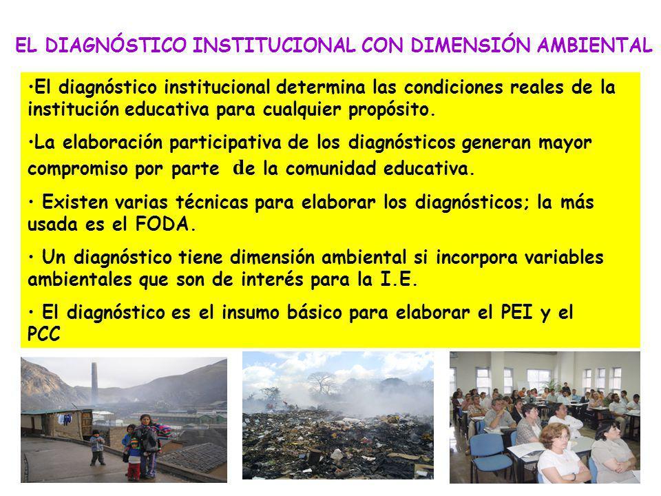 EL DIAGNÓSTICO INSTITUCIONAL CON DIMENSIÓN AMBIENTAL