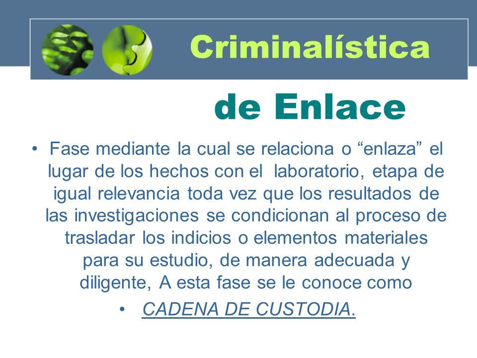 Criminalística de Enlace