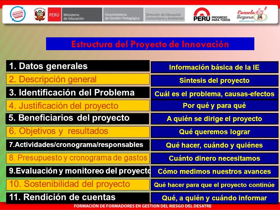 Estructura del Proyecto de Innovación