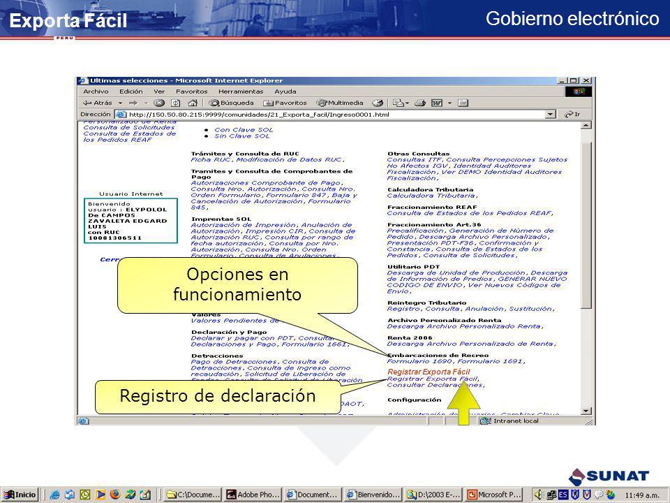 Exporta Fácil Opciones en funcionamiento Registro de declaración
