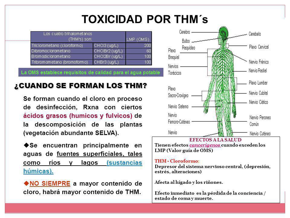 TOXICIDAD POR THM´s ¿CUANDO SE FORMAN LOS THM