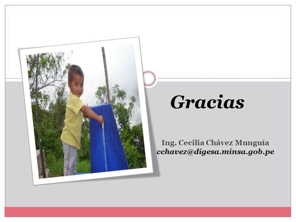 Ing. Cecilia Chávez Munguía