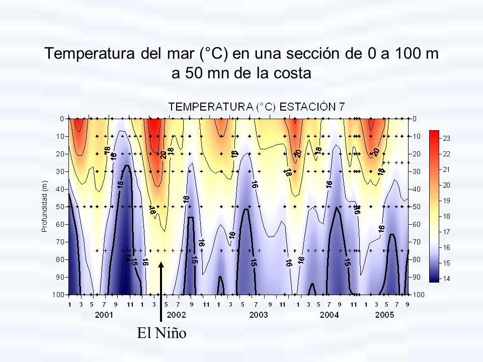 Temperatura del mar (°C) en una sección de 0 a 100 m a 50 mn de la costa