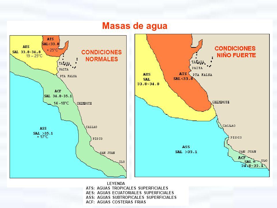 Masas de agua CONDICIONES NORMALES + 25°C 19 – 25°C 14 –18°C + 17°C