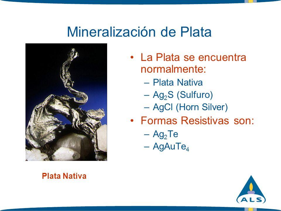 Mineralización de Plata