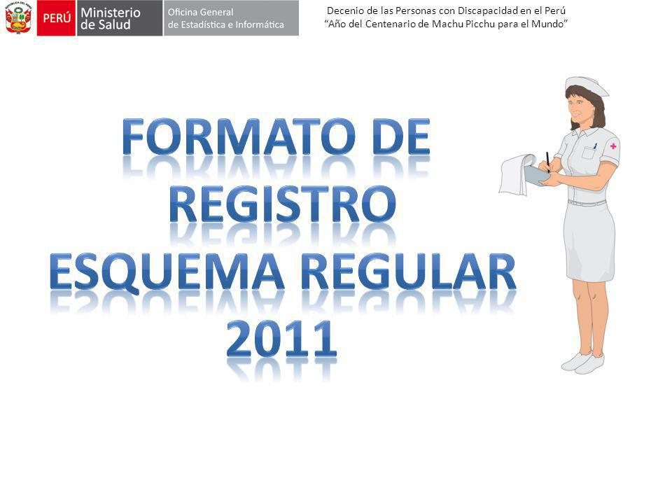 Formato de Registro Esquema regular 2011