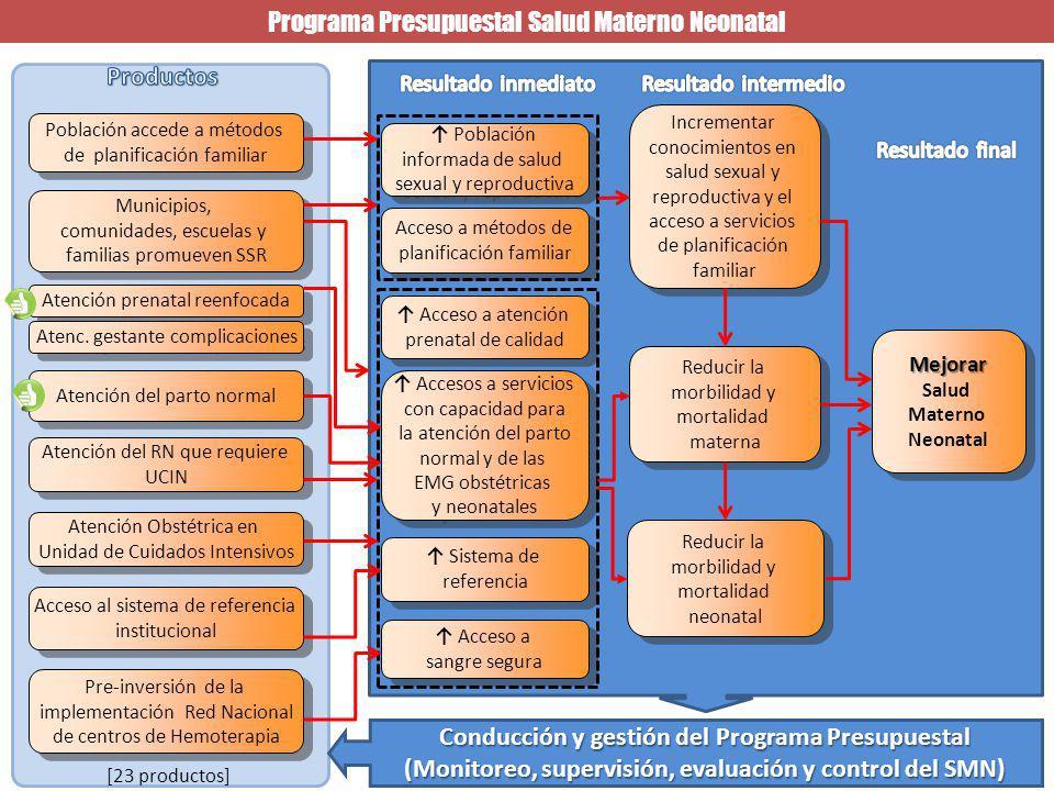 Programa Presupuestal Salud Materno Neonatal