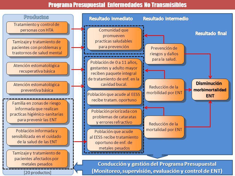 Programa Presupuestal Enfermedades No Transmisibles