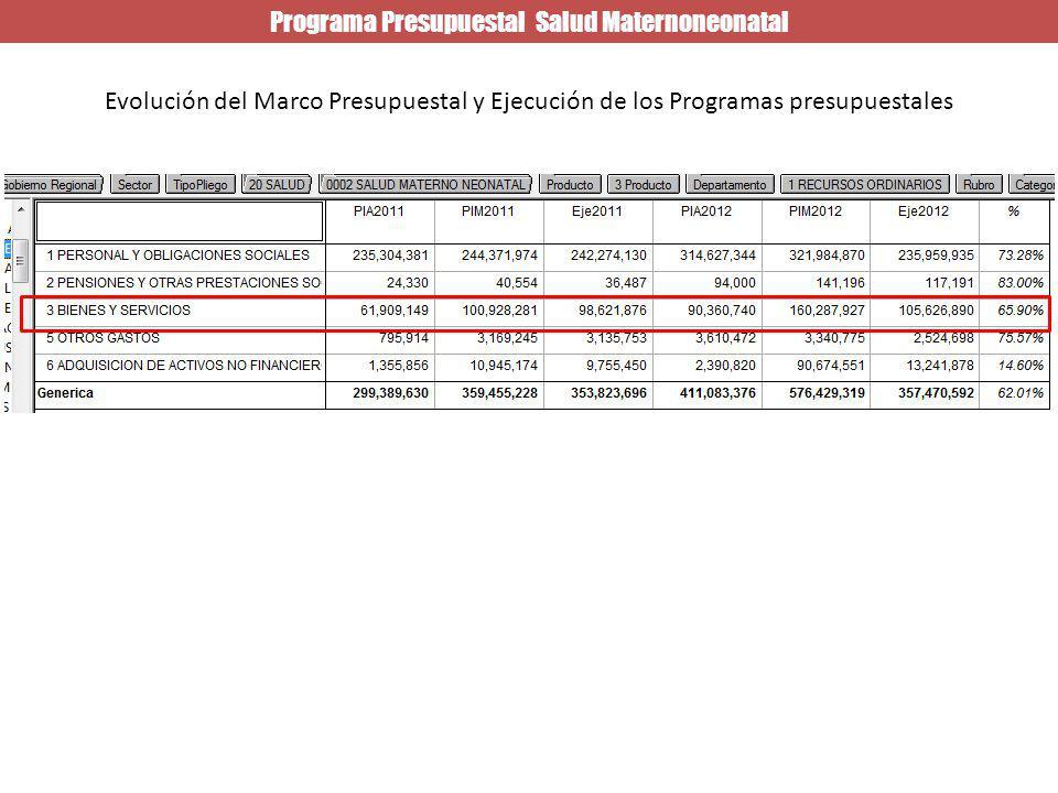 Programa Presupuestal Salud Maternoneonatal