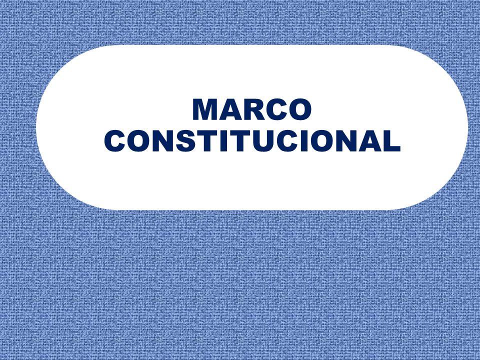 MARCO CONSTITUCIONAL