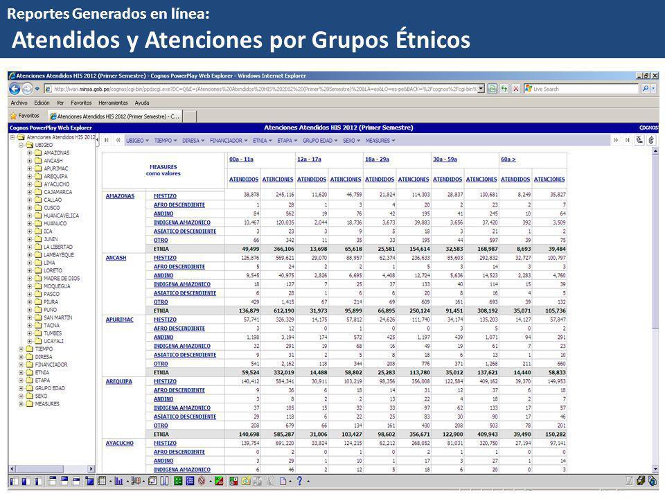 Atendidos y Atenciones por Grupos Étnicos