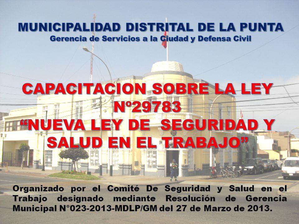 CAPACITACION SOBRE LA LEY Nº29783