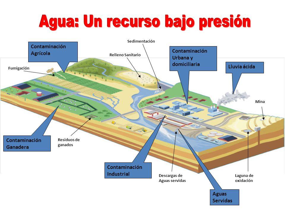 Agua: Un recurso bajo presión
