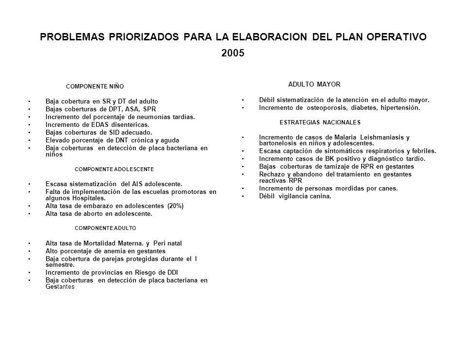 PROBLEMAS PRIORIZADOS PARA LA ELABORACION DEL PLAN OPERATIVO 2005