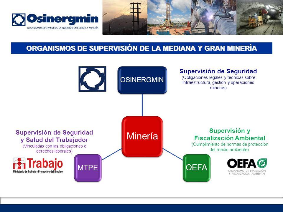 ORGANISMOS DE SUPERVISIÓN DE LA MEDIANA Y GRAN MINERÍA