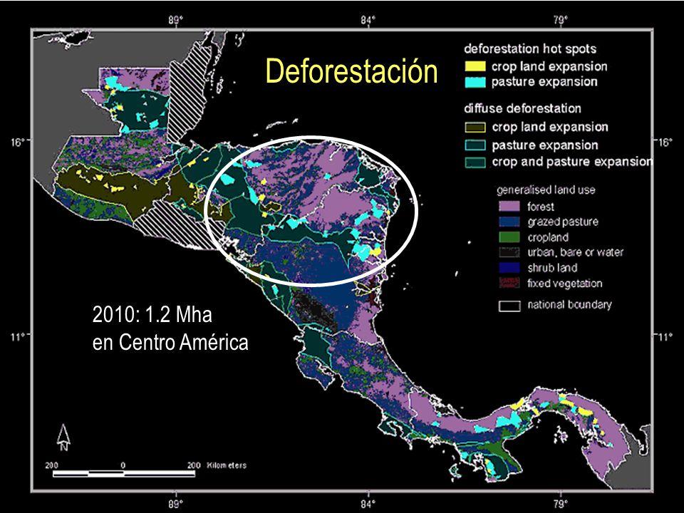 Deforestación 2010: 1.2 Mha en Centro América